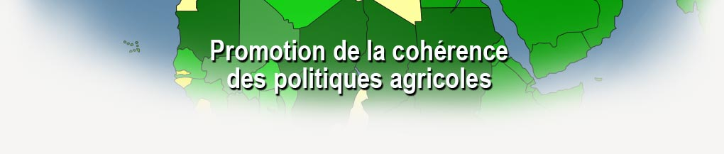 Promoting coherence in agricultural policies